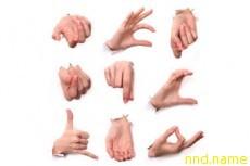 Официальный статус для языка жестов
