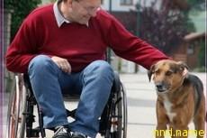 Большинство парализованных довольны своей жизнью
