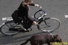 Велосипед - новое средство от мигрени