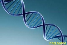 Беларусь - центр геномных биотехнологий