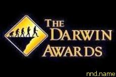 Премия Дарвина-2011 досталась колясочнику