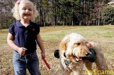 Девочка живет и дышит благодаря собаке