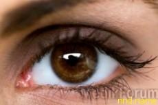 Ученые помогут инвалидам писать глазами