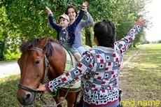 Катание на лошади лечение или вред?