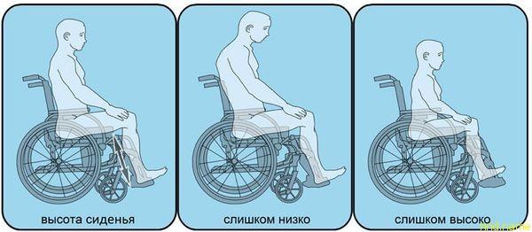 нужно провести измерение длины согнутой в коленном суставе ноги (от пятки или края каблука до нижнего края бедра)
