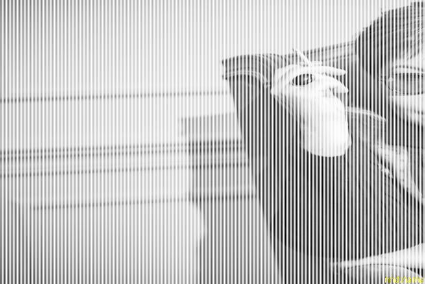 """Любовь Аркус привезла в Минск своего """"Антона"""" - фильм о мальчике-аутисте"""