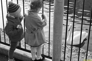 Московский зоопарк запускает программу зоотерапии
