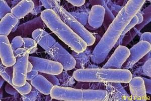Микробиологи пообещали терапию аутизма пробиотиками