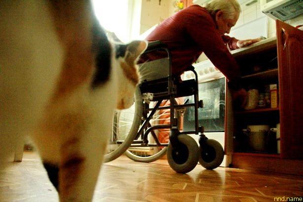Днем Богуславу составляет компанию его кошка Мурка