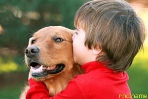 Использовать собак для реабилитации детей