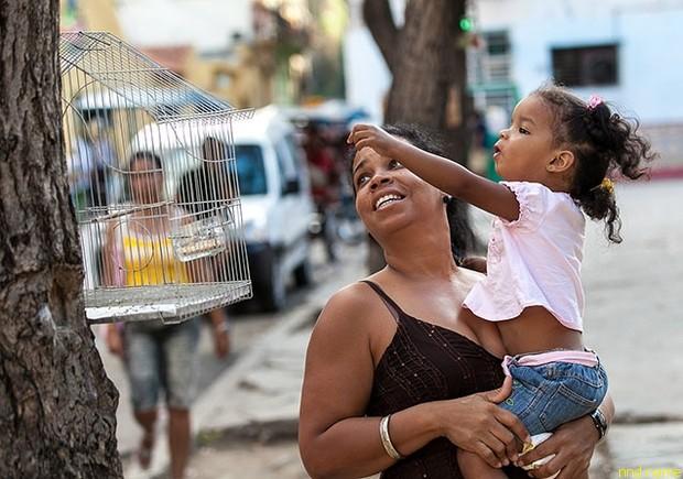 Куба - 50 лет после победы революции