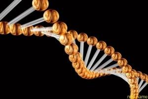 Плохая генетика отвечающая за поведение человека