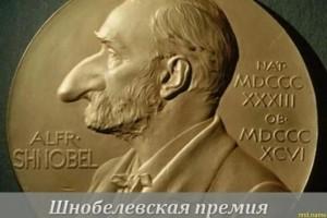 В Гарварде названы лауреаты Шнобелевской премии