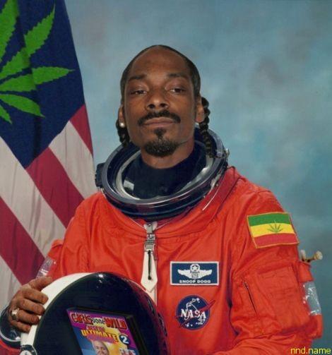 НАСА нужны добровольцы курить марихуану 70 дней: платят $18 000