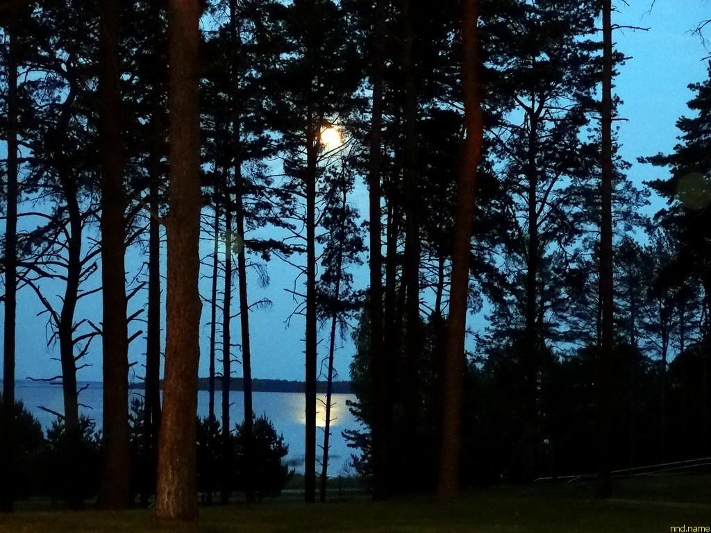 Дарья Лис – Спутник на озере Нарочь