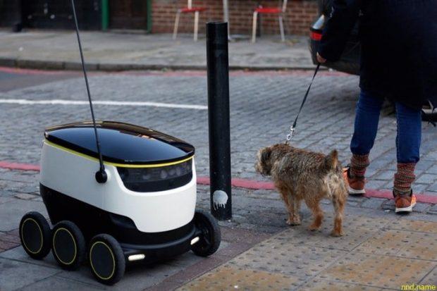 Доставка товаров автономными колёсными роботами