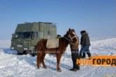Испанцам путешественникам помогли в Уральске