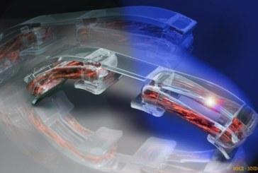 Мышцы человека для биороботов