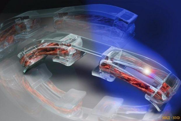 Мышцы человека - секрет к получению целой армии биороботов