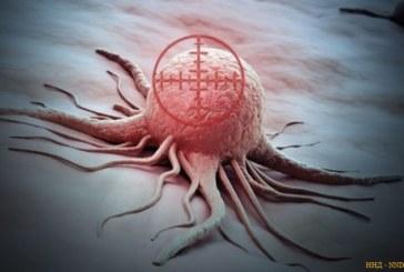 Уничтожать раковые клетки, оставляя в живых здоровые