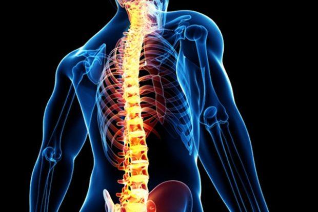 Исследование - как победить паралич после травм позвоночника
