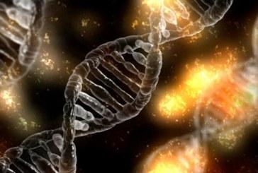 Исправить геном непосредственно в теле пациента