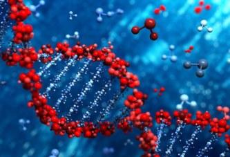 Открытия и технологии, связанные с молекулой ДНК