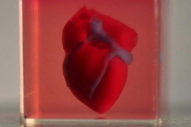 3D-принтер напечатал искусственное сердце