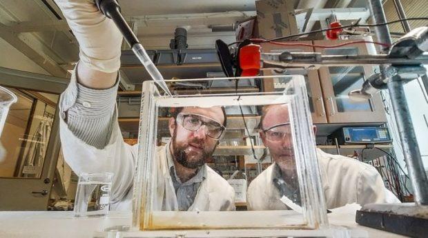 Учёные изобрели «живые» синтетические мышцы