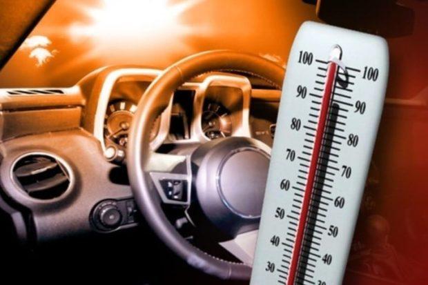 Умер на жаре в автомобиле из-за опекуна
