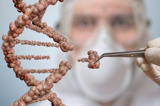 Новый метод редактирования генома оказался точнее классического CRISPR/Cas9