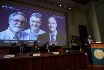 Нобелевская премия пофизиологии имедицине