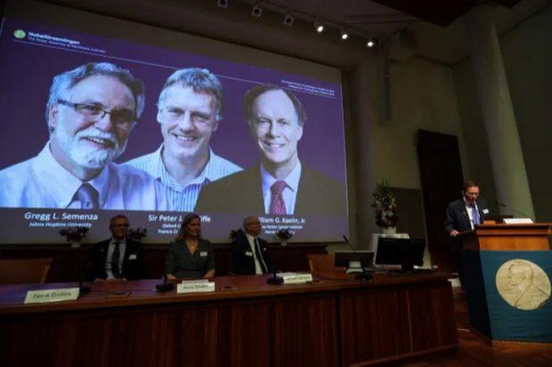 зачто присудили Нобелевскую премию пофизиологии имедицине