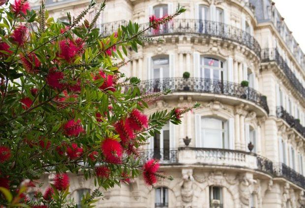 От Марселя до Монпелье: секреты французского сервиса