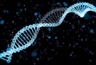 Новый метод ДНК тестирования
