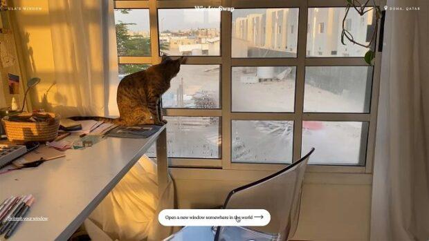 WindowSwap настоящее окно в другой город или другую страну