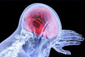 Мозг потребляет треть от объёма кислорода