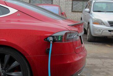Кто покупает Tesla в Беларуси