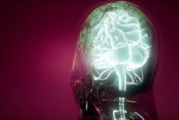 Зачем мозг блокирует нейроны