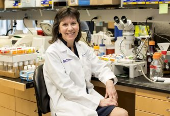 Новая надежда на антитела для лечения мышечной дистрофии