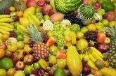 Фрукторианская диета отправит в могилу раньше срока