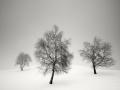 0029-landscapes-2-ppierre
